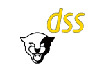 dss.png